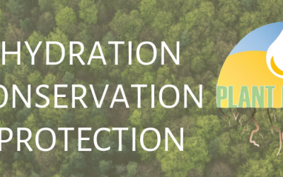 What is Root Haven – Hydration, Conservation, Protection